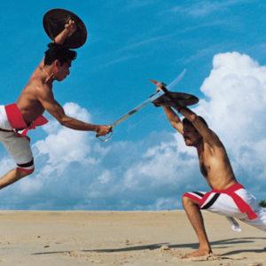 Kerala's martial arts