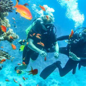 Scuba diving in Andaman.