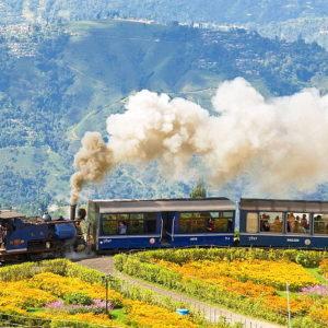 Train Ride in Darjeeling.